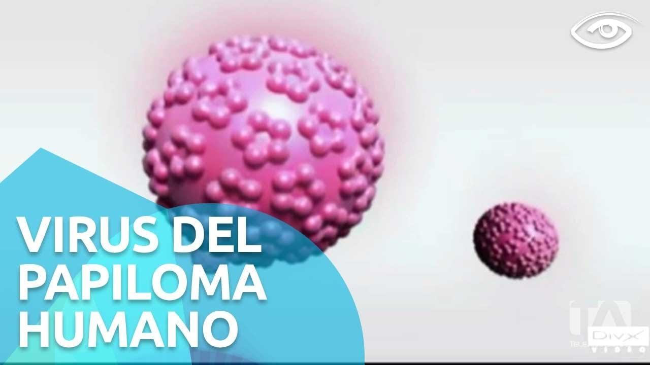 Virus del papiloma humano pdf 2017