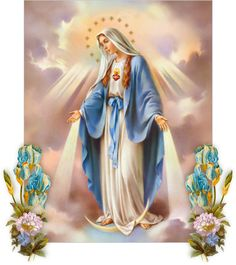 Mary immaculate star of the morning pdf