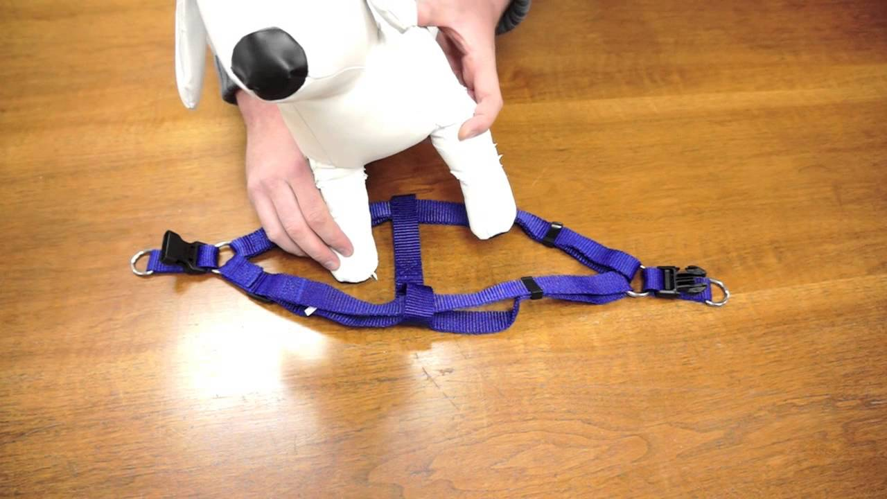 Kmart dog harness instructions