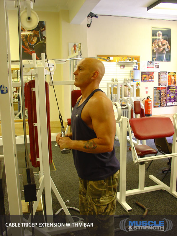 cable push down withd v bar exercise instructions