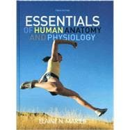 Essentials of human anatomy and physiology marieb 10th edition pdf