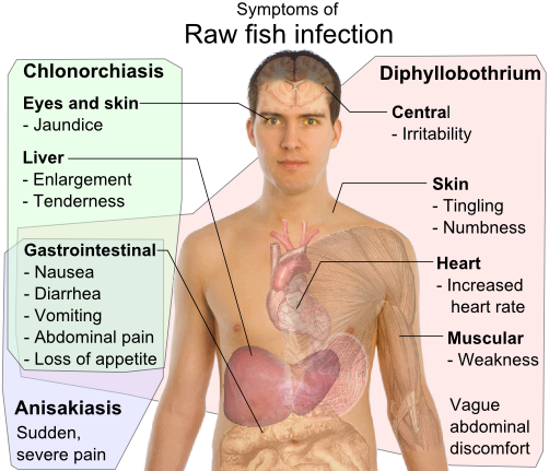 Parasitic infection in humans pdf